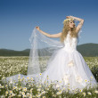 Wedding walk in the field - Stock Photo
