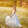 Stock Photo: Portrait of a beautiful bride in a field of daisies