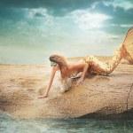 Fairy mermaid on the sea — Stock Photo #27485965