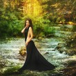 Beautiful girl in black dress in fairy forest — Stock Photo #27925547