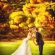 Newlyweds kissing in autumn park — Foto de Stock   #28559929