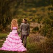 Newlyweds walk in nature — Stock Photo #32135551