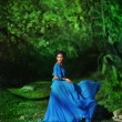 Beautiful girl in blue dress walking in the magical forest — Photo