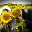 Wedding smiling sunflowers — Stock Photo #21698347