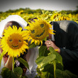 Wedding smiling sunflowers - Stock Photo