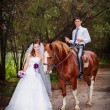 Bride and groom with horses — ストック写真