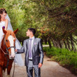 Bride and groom with horses — Stock Photo #23117042