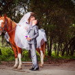 Bride and groom with horses - Stock Photo