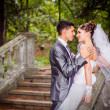 Lovely Young Wedding Couple - Stock Photo