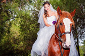 Bride horseback at horse — Stock Photo