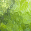 Green blurry background — Stockfoto