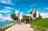 Walkway in a the beautiful park in Miami Beach — Stock Photo