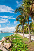 Walkway in a the beautiful park in Miami Beach — Stock Photo