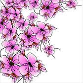 Blume sacura — Stockvektor