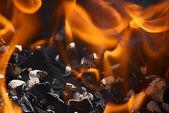 炎 — ストック写真