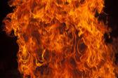 火焰 — 图库照片