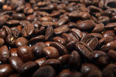 Coffee beans, arabica texture — Photo