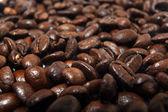 Coffee beans, arabica texture — Stock Photo