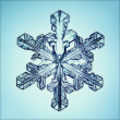 Ice crystal — Stock Photo #22162177