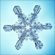 Ice crystal — Stock Photo #22162189