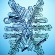 Ice crystal — Foto Stock