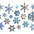 Collection of snowflakes — Stock Photo
