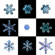 Collection of snowflakes natural macro — Stock Photo #22162557