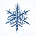Natural snowflake — Stock Photo #22162665