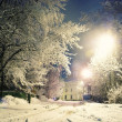 Snow in the night city — Stock Photo #22162775