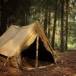 Old tent in the autumn forest, home for adventure and travel — Stock Photo