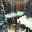 Freezing river in the forest — Foto Stock