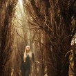 Stock Photo: Beautiful young girl in magical forest, mysterious fairy tale Halloween
