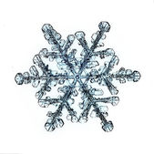 Natural Christmas snowflake isolated on white background — Stock Photo