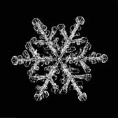 Natural snowflake isolated on a black background — Stock Photo