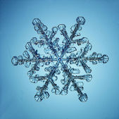 Natural snowflake macro — Stockfoto