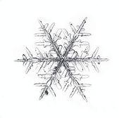 Schneeflocke auf weißem hintergrund, die natürliche — Stockfoto
