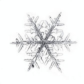 Snowflake on white background natural — Stock Photo