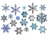 Collection of snowflakes — Photo