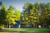 Casa de verão floresta resort — Foto Stock