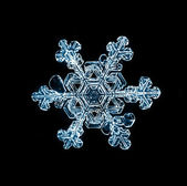 Snowflake isolated on a black background natural — Stock Photo