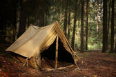 Old tent in the autumn forest, home for adventure and travel — Stockfoto