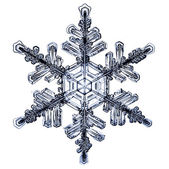 Natural Christmas snowflake isolated on white background — Stockfoto