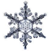 Natuurlijke kerstmis sneeuwvlok geïsoleerd op witte achtergrond — Stockfoto