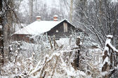 Village in winter, the snow-covered countryside, forest and wood houses — Stock Photo