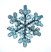 Fiocco di neve su sfondo bianco — Foto Stock