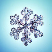 Ice crystal snowflake — Stock Photo