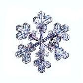 Snowflake on white background — Stock Photo
