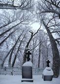 Cross on graveyard — Stock Photo