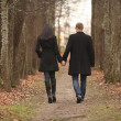 Stock Photo: Young men and women leaving path in park