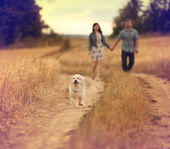 Young man and woman outdoors playing with a small dog — Stock Photo